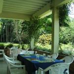 Botanical Garden Kisantu